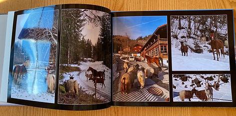 GH Buch2.jpg