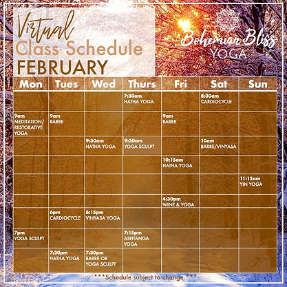 Virtual Class Schedule February 2.jpg