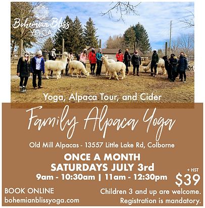 Alpaca Yoga Ad 6.png