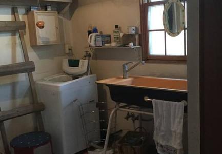 Washing machine and sink