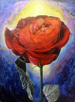Ana's Rose 30x40