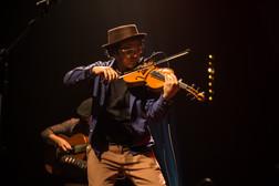 violinonocoro-219.jpg