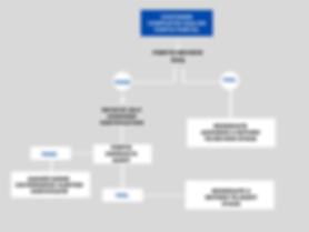 IASME flowchart (1).png