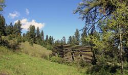 Douglas Mtn Cabin