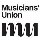 Musicians Union For Teachers Offering Guitar Lessons