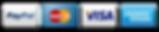 credit-card-logos-visa-mastercard-amex-p