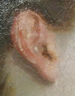 18. Drawing the EAR