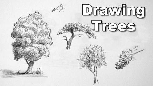 Drawing Trees Worksheets