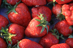 close up organic strawberries