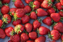 tray of organic strawberries