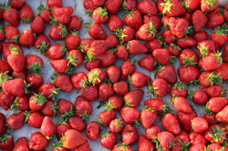 tray of organic strawberries