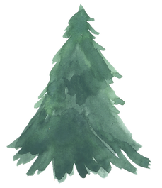 ChristmasTree5.png