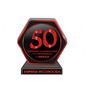 50 EMPRESAS CONSULTORIA
