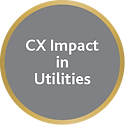 CX Impact in Utilities