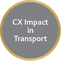 CX Impact in Transport - B2C