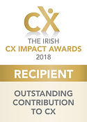 Outstanding Contribution to CX