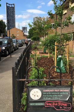 Walworth Community fruit gardens