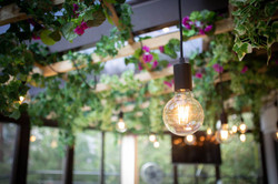 Botanical Board Room