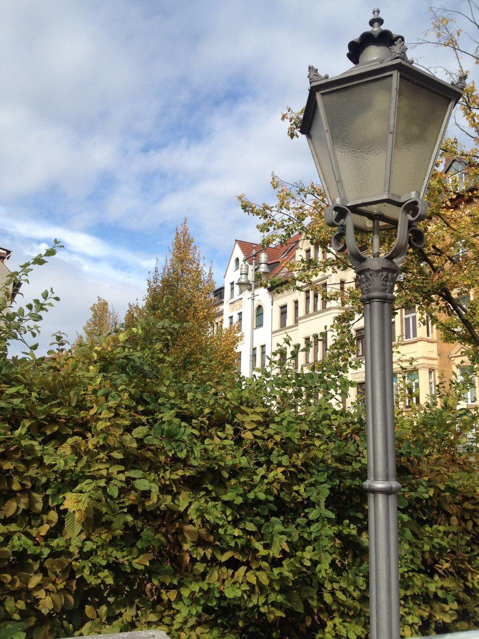 Altenburg Leipzig Würzburg Wertheim Immobilien Makler Maklerin