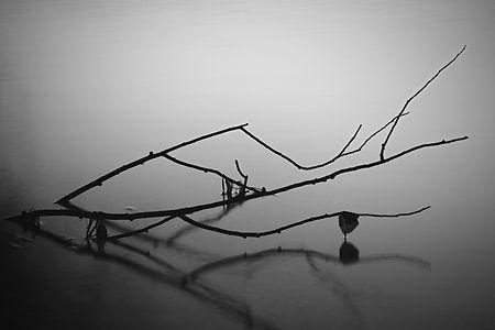 Minimalistické černobílé foto