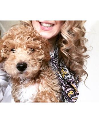 Abby's pup 6