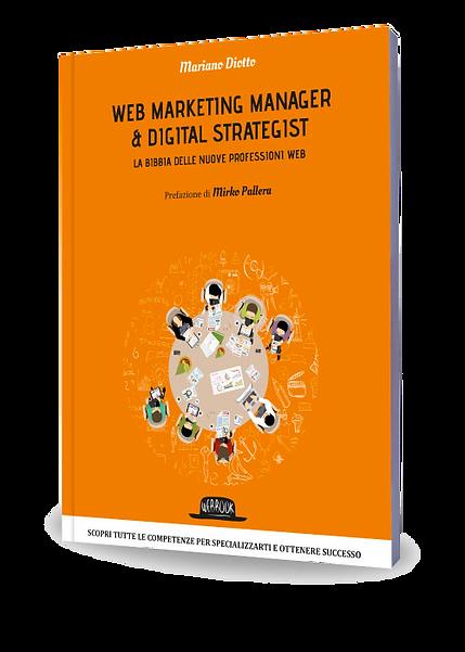 webmarketing2.png