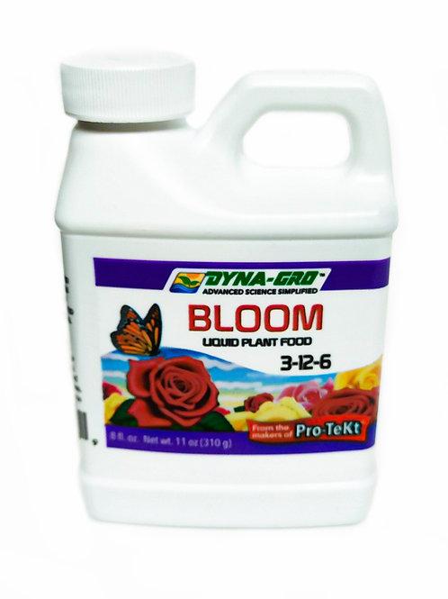 Dyna-Gro 'Bloom'