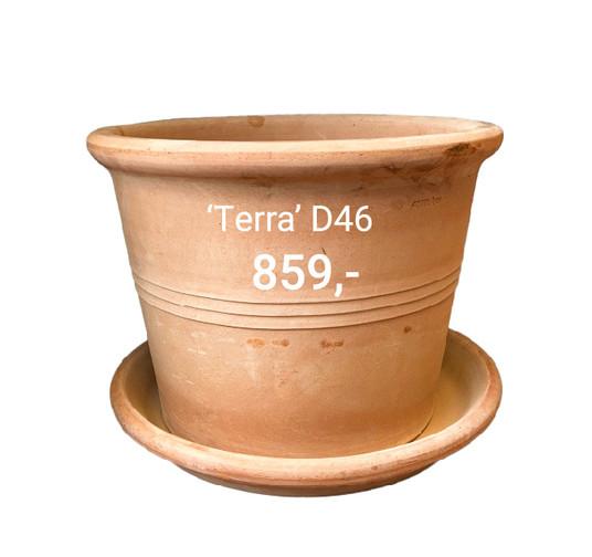 terra46-02.jpg