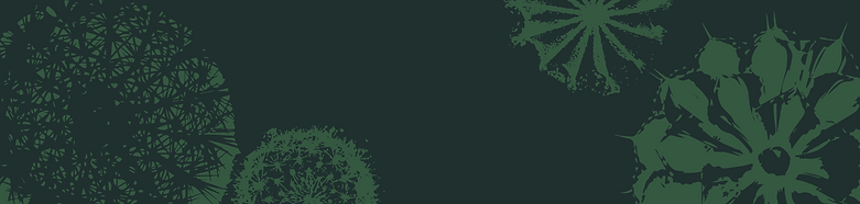 banner_site.png