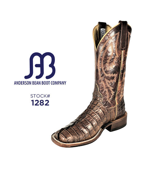 Anderson Bean 12 inch / Stock #1282