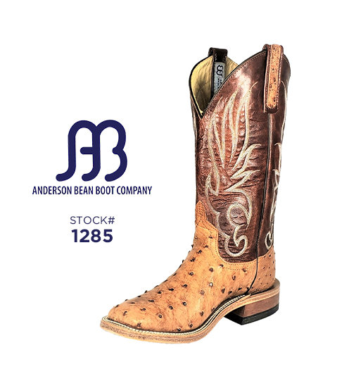 Anderson Bean 12 inch / Stock #1285