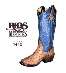 Rios-1442-rum brown md fq ostr-blue