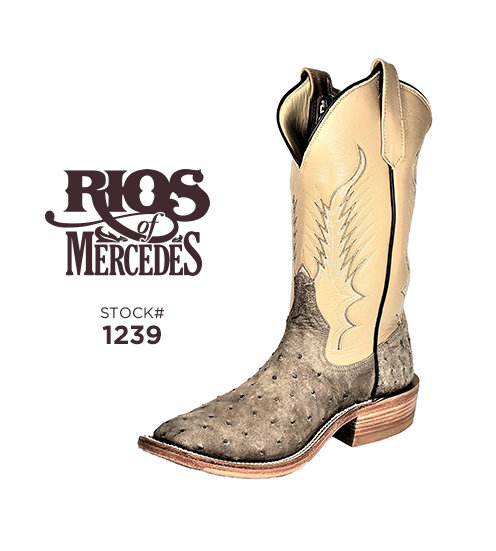 Rios of Mercedes 12 inch / Stock #1239