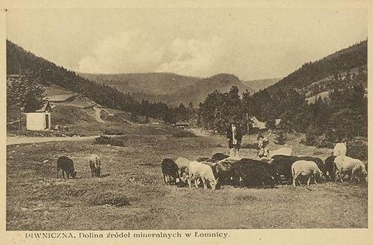 pocztówka z Łomnicy .jpg