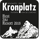 Icon_Best Ski Resort.jpg