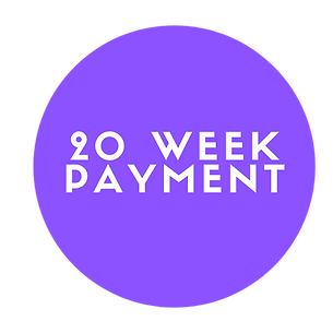 20 WEEK SESSION PAYMENT .png