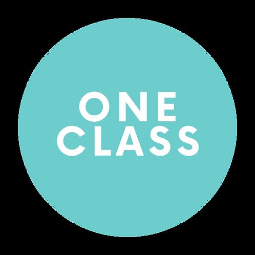 1 Class / Week / Student