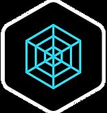 SpiderwebVFT-Icon.png