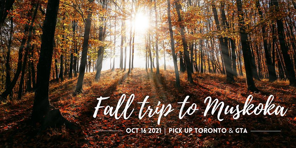 Fall Trip to Muskoka, ON