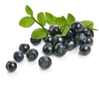 Wild Mountain Huckleberry