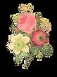 Ejemplo de la flor inversa