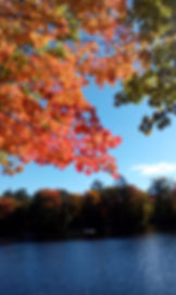 a colorful palette