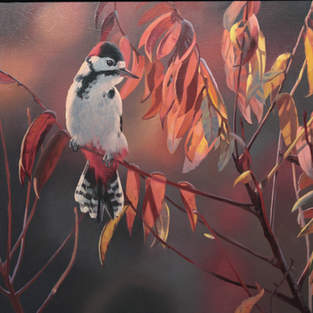 Great Spotted Woodpecker and Sumac
