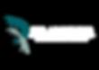 Logo DR.png