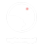 WYLATANY logo-02.png