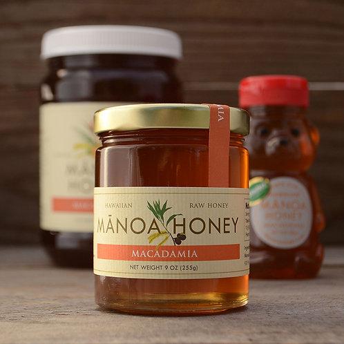 Macadamia Honey
