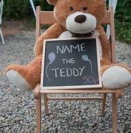 Events Teddy.jpg
