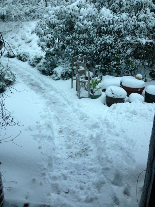 Endlich mal Schnee .jpg.jpg
