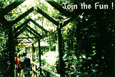 Monkey Jungle'| Amazonian Rainforest | Only Semi-Natural Tropical Rainforest in North America