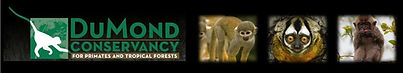 The DuMond Conservancy for Primates & Tropical Forests | Science & Education | Monkey Jungle
